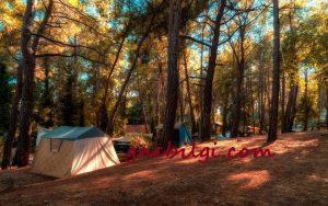 İncekum Kamp Alani Nasil Gidilir