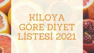 Kiloya Gore Diyet Listesi 2021