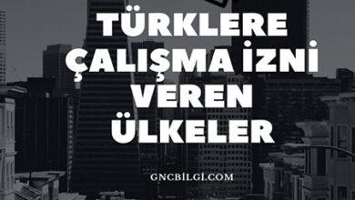Turklere Calisma Izni Veren Ulkeler