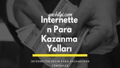 Internetten Para Kazanma Yollari 1