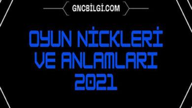 Oyun Nickleri ve Anlamlari 2021 Sekilli ve Turkce