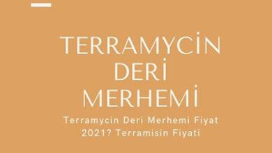 Terramycin Deri Merhemi Fiyat 2021 Terramisin Fiyati