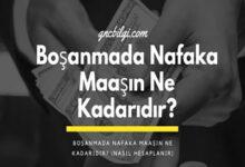 Bosanmada Nafaka Maasin Ne Kadaridir